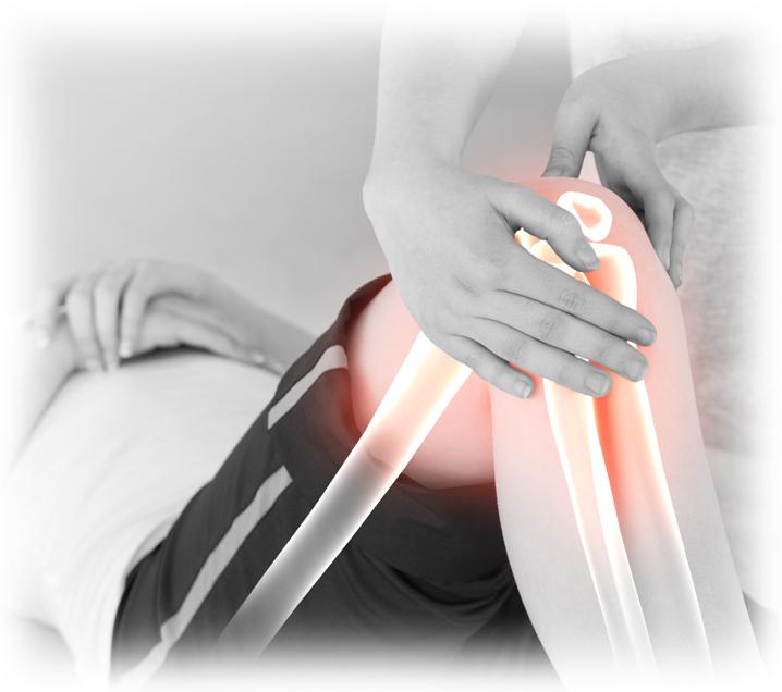 Digital-Zusammensetzung von hervorgehobenen Knochen einer Frau am Physiotherapeuten während einer Therapie